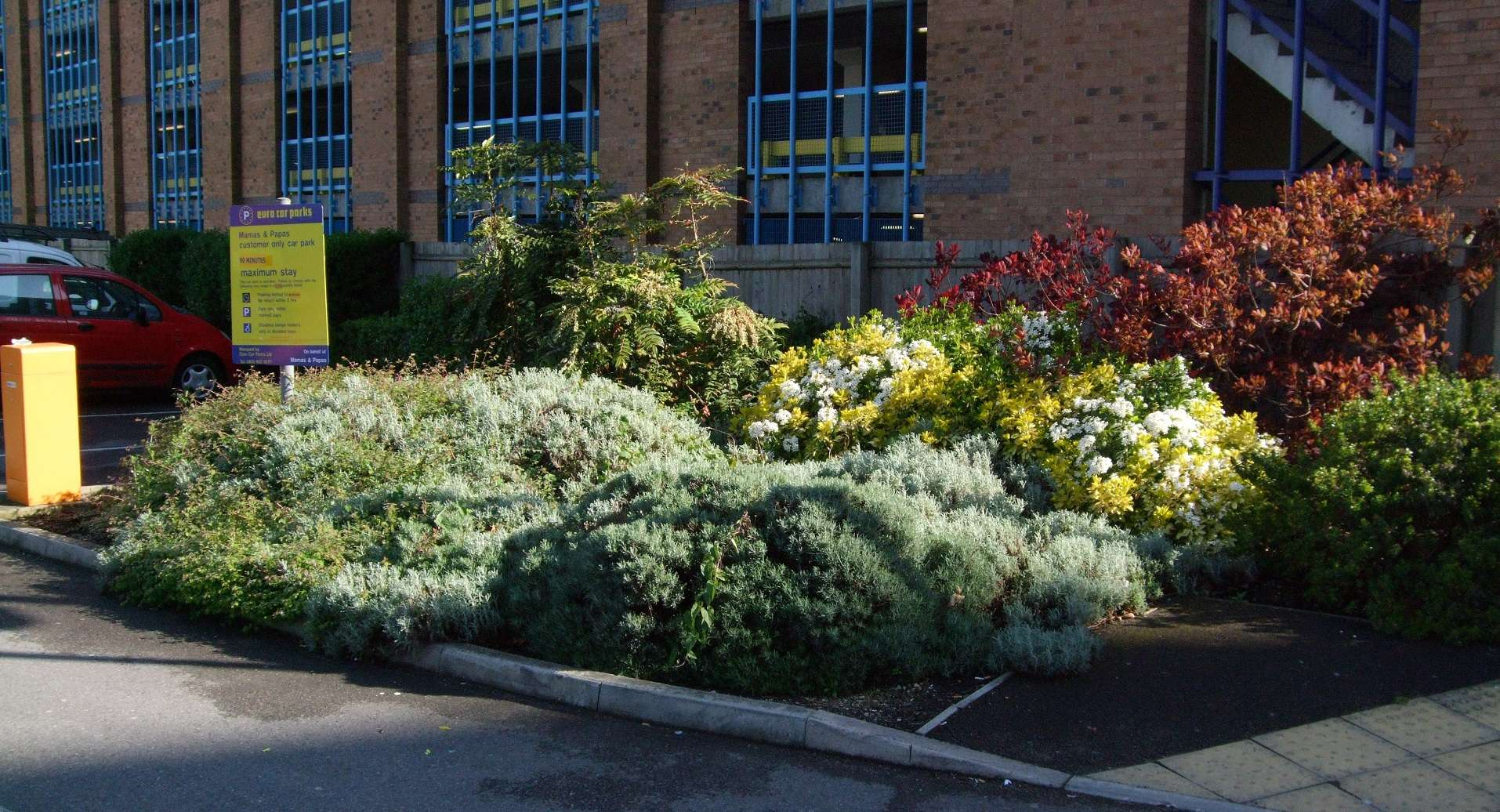 5 awards in the Southampton in Bloom Competition
